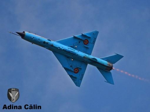 MiG 21 (14)