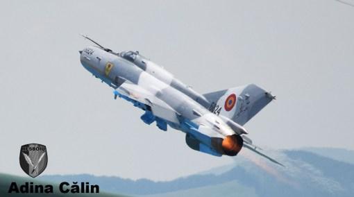 MiG 21 (18)
