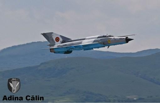 MiG 21 (20)