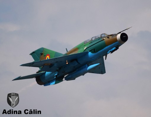 MiG 21 (5)