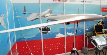 Drona romaneasca Hirrus