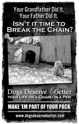 One of the inexpensive educational posters available for order from Dogs Deserve Better