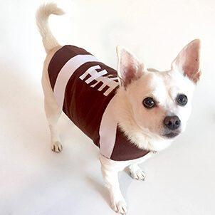 Traje de fútbol para perros de acción de gracias