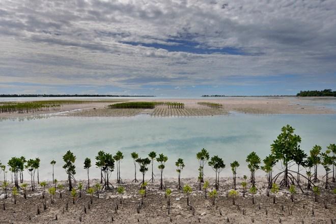 Kiribati 2
