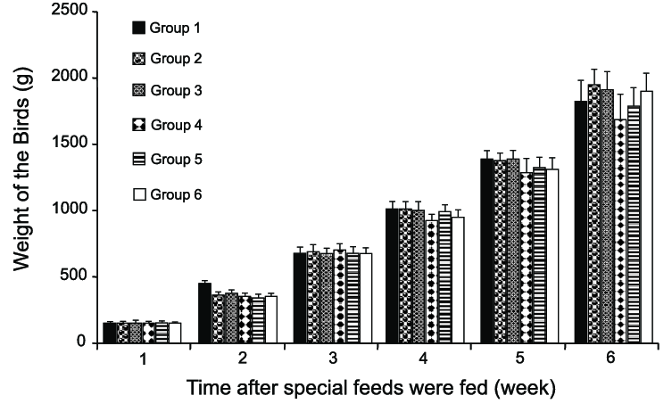 Average body weight of each group measured at one-week