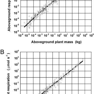 Our methods for measuring whole-plant respiration from