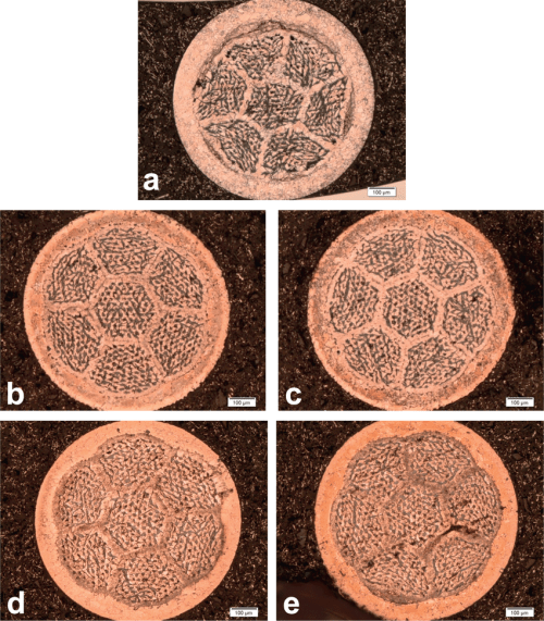 small resolution of optical micrographs from etched cross sections of wires after pmp download scientific diagram