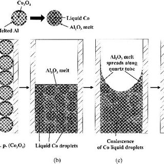 (PDF) Reaction and phase separation mechanisms during