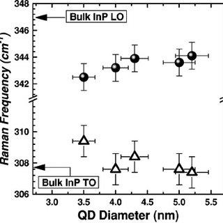 Raman spectra of InP quantum dots of different diameter