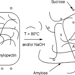 (PDF) Starch-sugar synergy in wood adhesion science: Basic