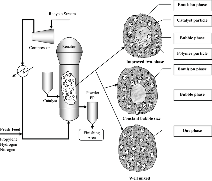 Schematic of an industrial fluidized bed polypropylene