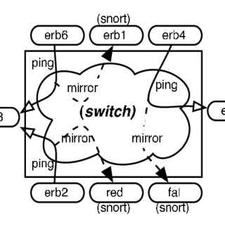 Conceptual view of switch-port and mirroring configuration