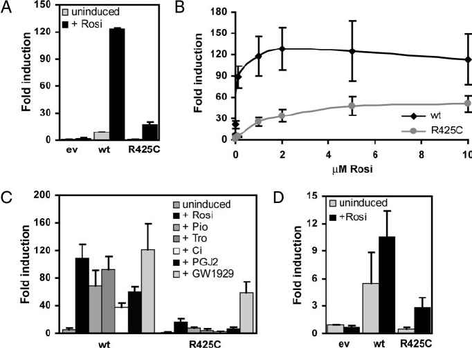 The FPLD3-Associated R425C Mutation Reduces the