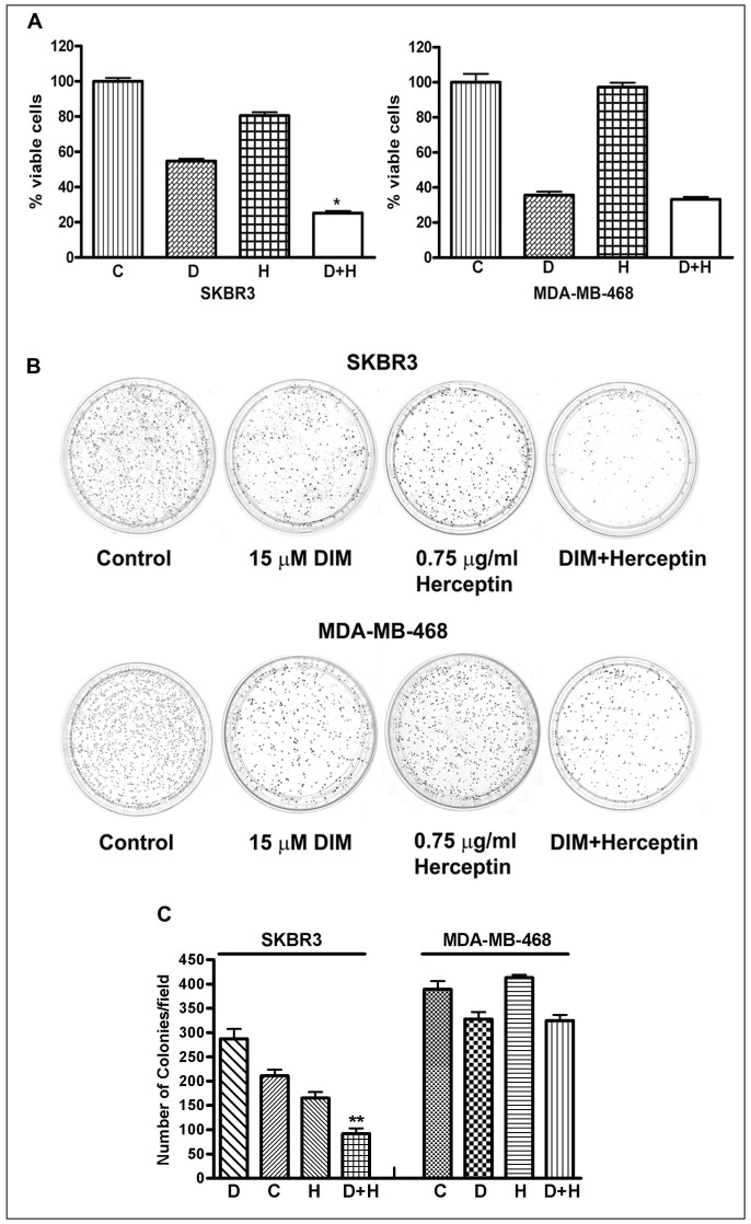 (A) SKBR3 and MDA-MB-468 cells were treated with DIM (15