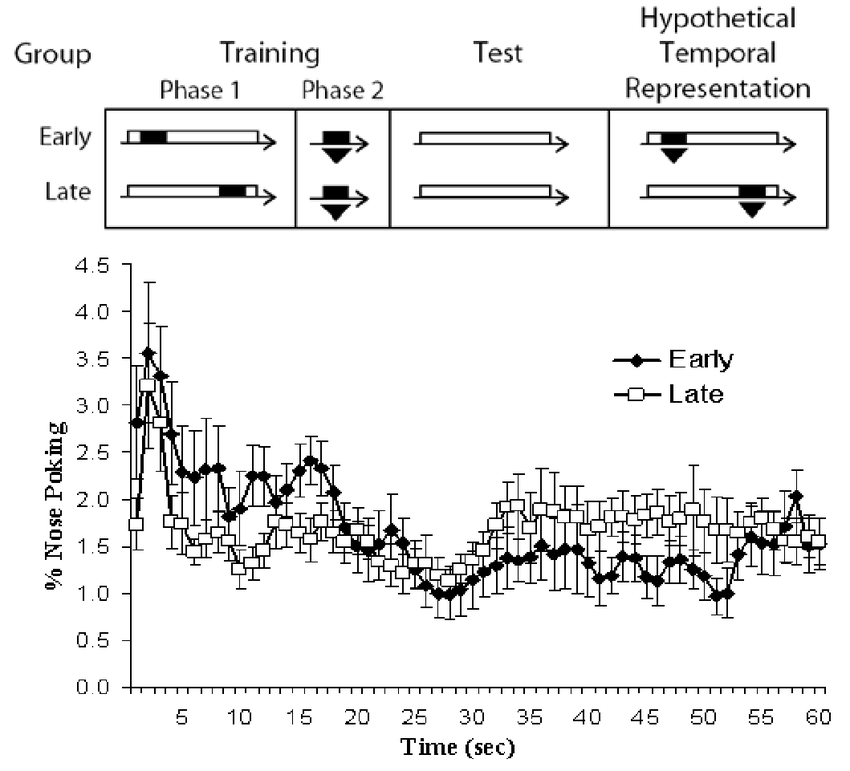 Sensory Preconditioning in Spatial Learning Using a Touch