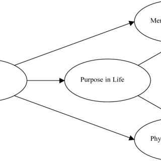 (PDF) A RELIABILITY AND VALIDITY STUDY OF THE MEANINGFUL