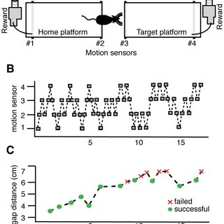 (PDF) Deficits in Tactile Learning in a Mouse Model of