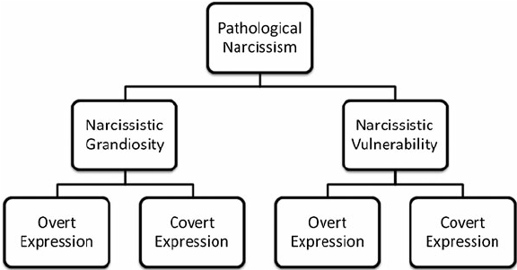 The hierarchical organization of pathological narcissism