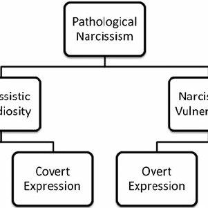 (PDF) Pathological Narcissism and Narcissistic Personality