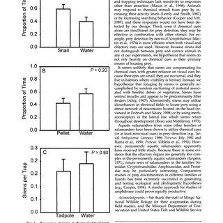 (PDF) Does the Aquatic Salamander, Siren intermedia