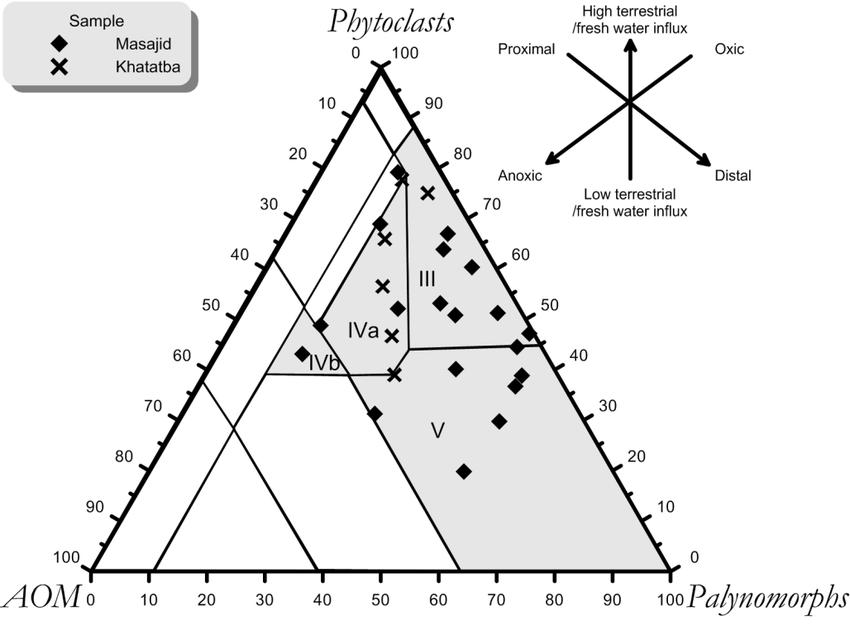 Tyson (1993) type ternary diagram (APP). . Field I = gas