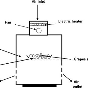 Schematic diagram of the hot air drying equipment (not to