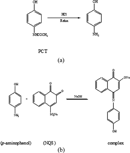 (A) Hydrolysis of the paracetamol and (B) reaction of p