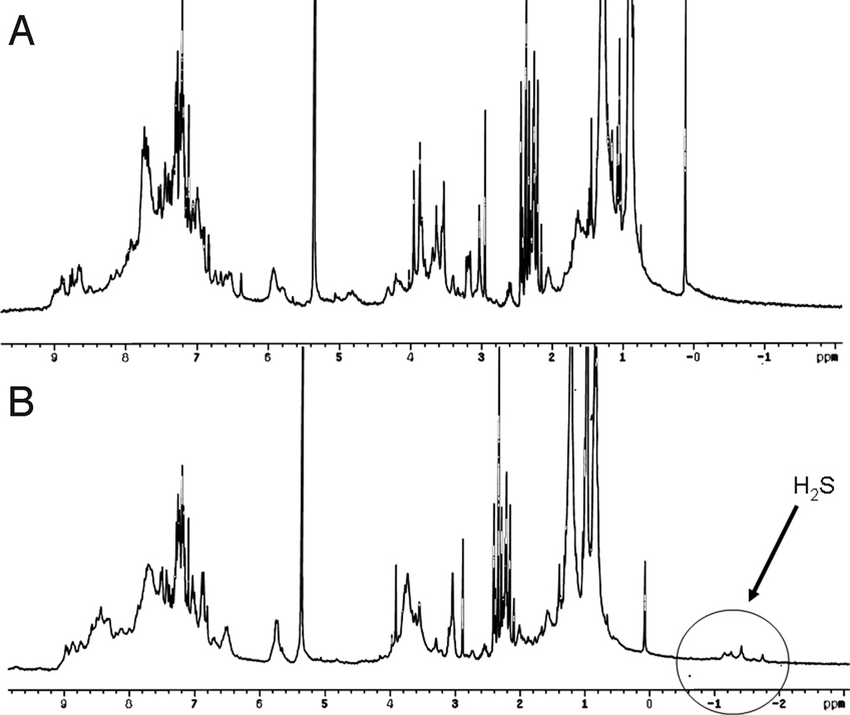 Fig. 4. 1 H-NMR spectrum (recorded in CD2Cl2 at 50 °C, 300