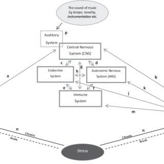 (PDF) The Psychoneuroimmunological Effects of Music: A