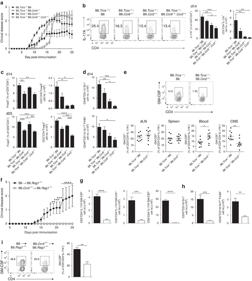 CCR2 drives recruitment of Th17 cells with pathogenic