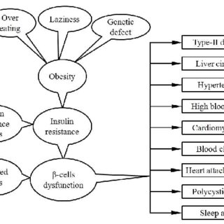 (PDF) Obesity, obesity-related diseases and application of