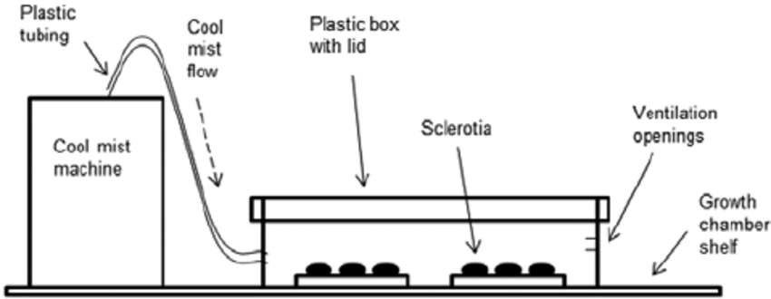 Diagram of the mist chambers used to study the influence