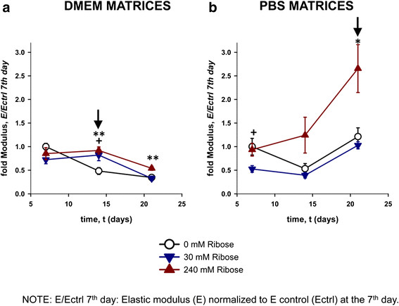 Collagen post-glycation increased the matrix stiffness