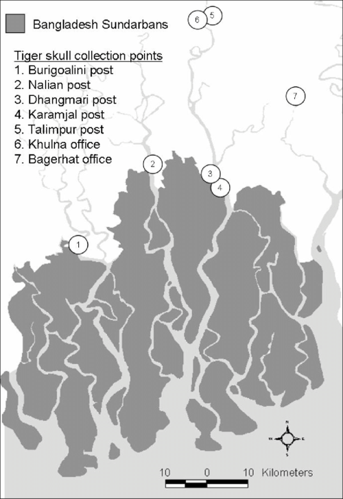 small resolution of tiger skull collection points in the bangladesh sundarbans area