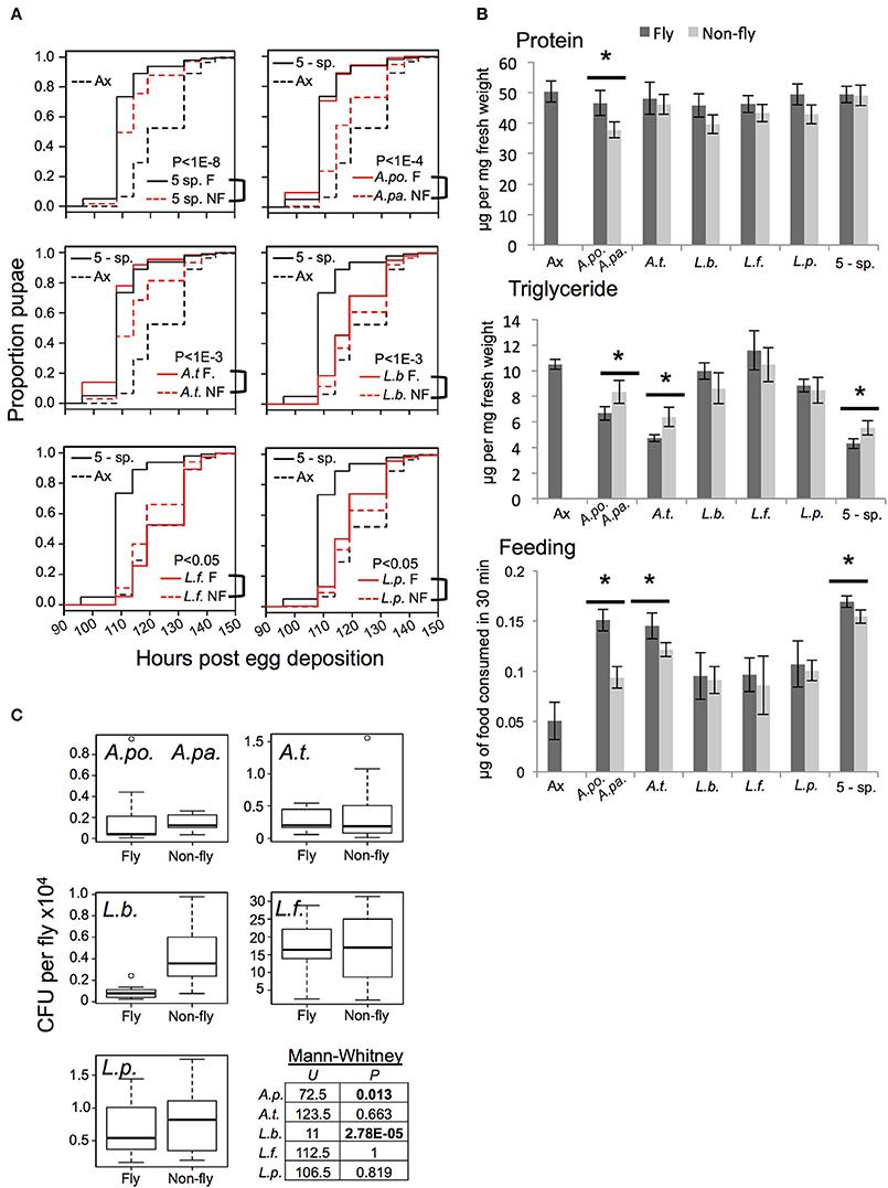 Functional comparison of gnotobiotic Drosophila colonized