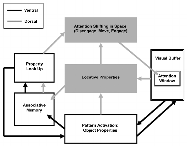 Schematic representation of the general architecture of