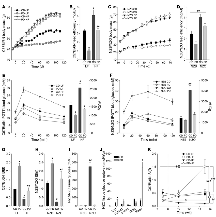 Dietary protein dilution promotes improved glucose