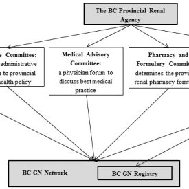 The logistics of data capture for the BC GN Registry