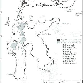(PDF) Origin of Magnetite- and Ilmenite-series Granitic