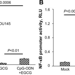 Induction of the IL-8 promoter by CpG-ODN requires NF-κB