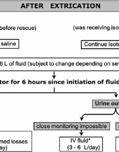 Algorithm for fluid resuscitation to prevent crush related aki in entrapped victims of mass disasters early after extrication abbreviations iv also rh researchgate