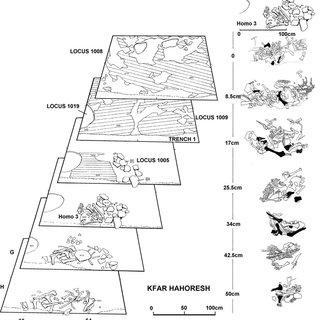 (PDF) Goring-Morris, A. N. & L. Kolska Horwitz 2007