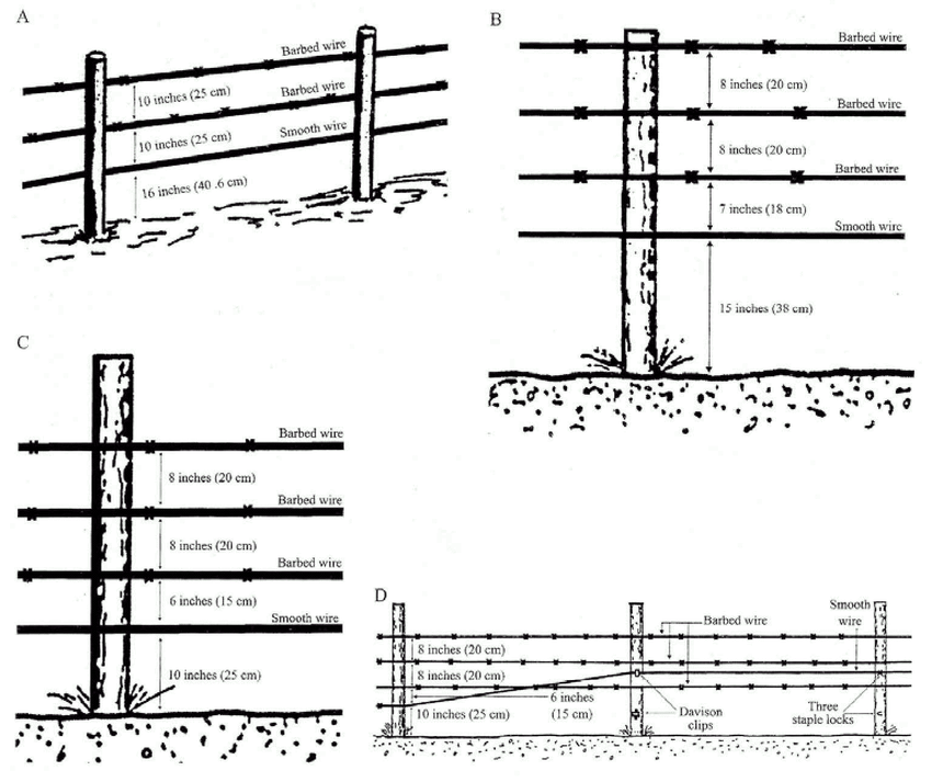 Specifications for (A) 3-strand (Karsky 1988) and (B