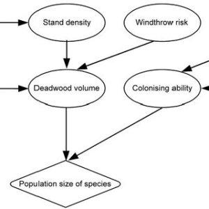 (PDF) Bayesian Belief Networks in environmental modelling