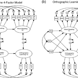 (PDF) Orthographic processing and children's word reading