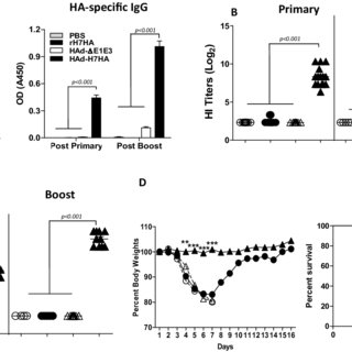 Reducing and non-reducing SDS-PAGE of H1N1 rHA proteins