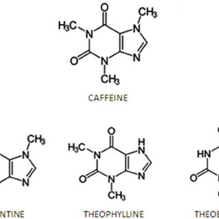 Chemical structure of methylxanthines: caffeine