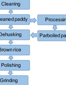 Flow chart of the rice dry milling process also pdf introduction to cereal processing and by products rh researchgate