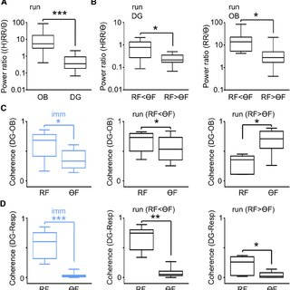 (PDF) Hippocampal Respiration-Driven Rhythm Distinct from