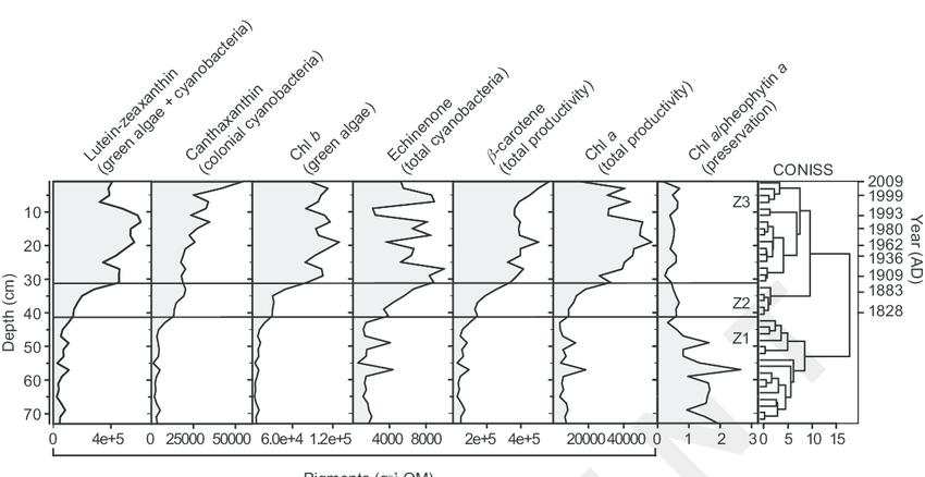 The dynamics of major sedimentary pigments in Lake Verevi